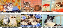1pc Kitten Pet Animal Acrylic Diy Painting By Number Hobby K